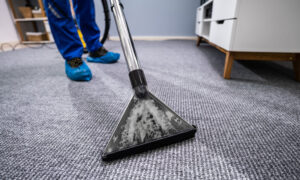 Carpet Cleaning – Is Using a Professional Carpet Cleaner Essential?