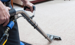 How to Smarten Up Your Carpet Care Program