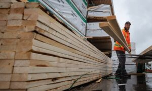 What soaring lumber prices mean for your home renovation