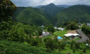 In Japan, a Countryside Home Could Be Yours for Under $500