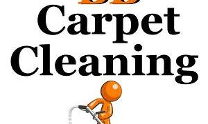 Wake Forest NC Pet Friendly Carpet Cleaning Safe Fabric Care Service Expanded