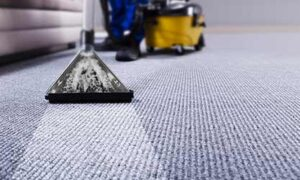 Six Maintenance Tips For Carpet Cleaning Month