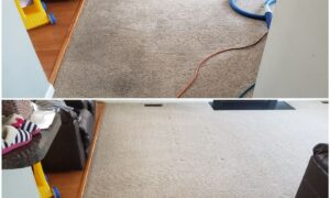 Carpet Cleaning in Woodbridge, VA: Get Your Carpets Clear Again!