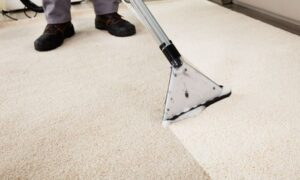 Carpet Cleaners of Rhode Island Giving Discounts for Multi-Room Carpet Cleaning Services